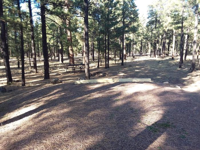 Grouse Loop Site 30 partially shaded with picnic table and fire pit