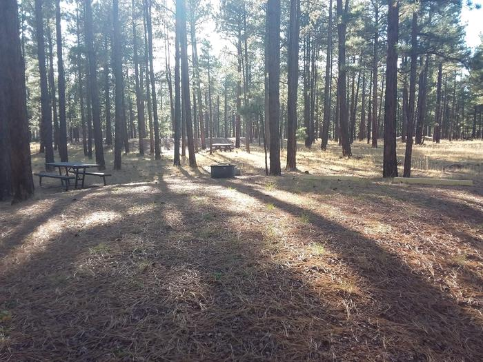Grouse Loop Site 37 partially shaded with picnic table and fire ring