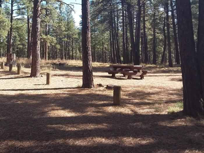 Site 28 with fire ring, picnic table, and parking.