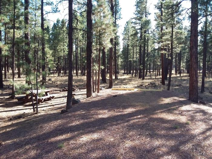 Beaver Loop Site 42 partially shaded with picnic table and fire pit