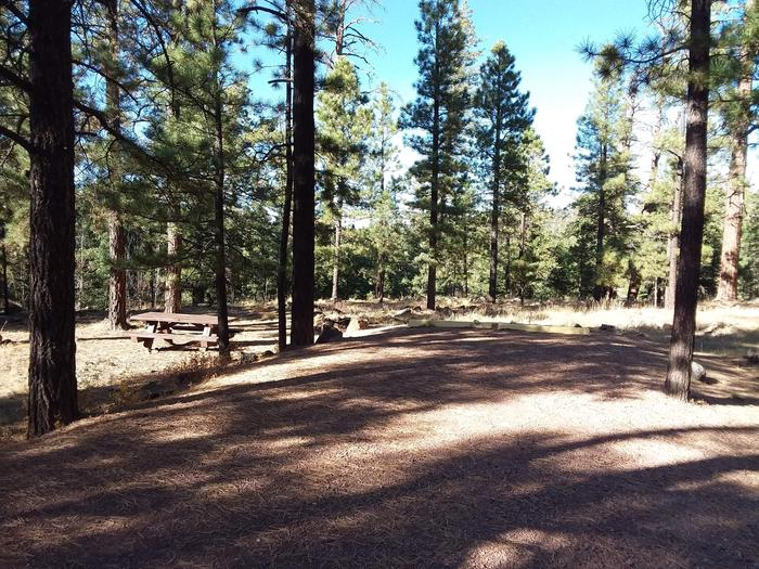 Beaver Loop Site 48 partially shaded with picnic table and campfire pit
