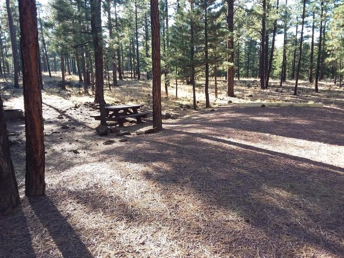Beaver Loop Site 51 partially shaded with picnic table and campfire ring