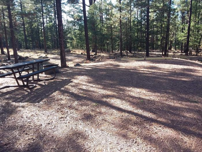 Beaver Loop Site 50 partially shaded with picnic table and campfire ring