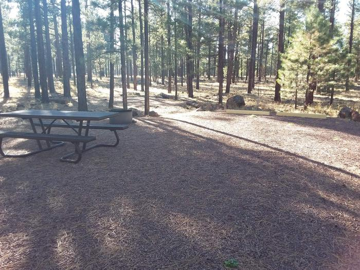 Beaver Loop Site 54 partially shaded with picnic table and campfire ring