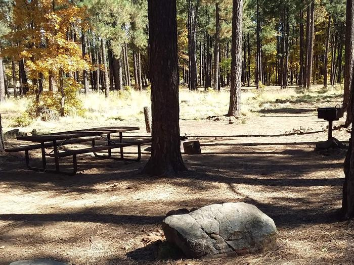 Site 72 With trees, a table, and grill.Campsite 72