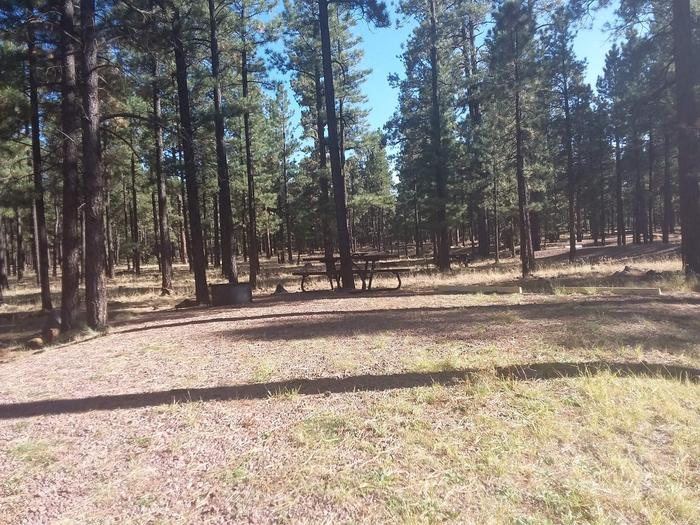 Wildcat Loop Site 72 partially shaded with picnic table and campfire ring
