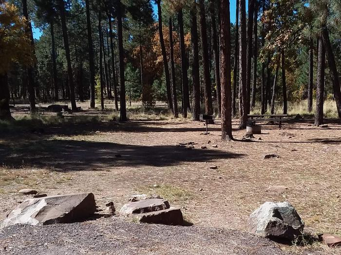 Site 74 in the background among trees behind three rocks.Campsite 74 with table, grill, and campfire ring.