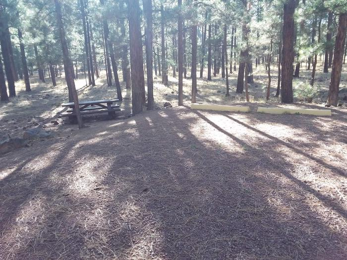 Bear Loop Site 80 partially shaded with picnic table