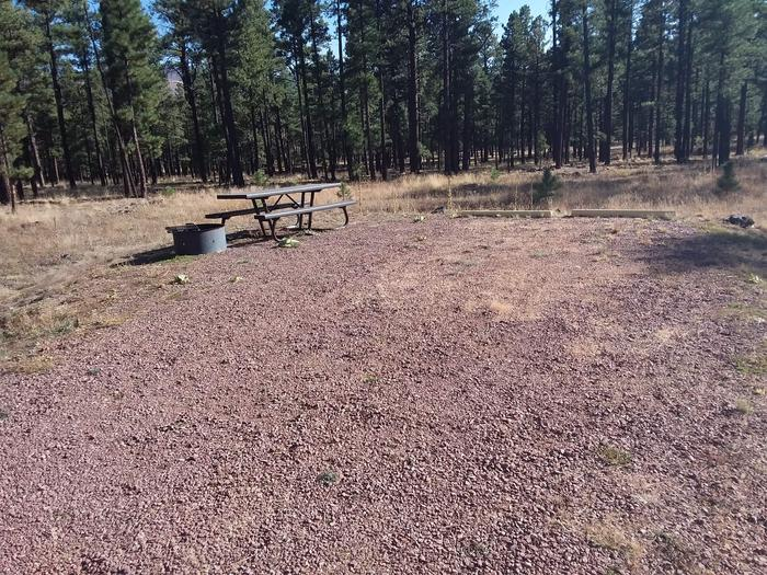 Bear Loop Site 84 with picnic table and campfire ring