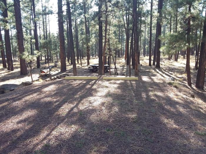 Bear Loop Site 91 partially shaded with picnic table, campfire pit and log for possible seating