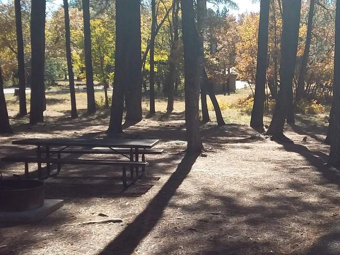 Site 83 With a table and campfire ring in front of trees.Campsite 83