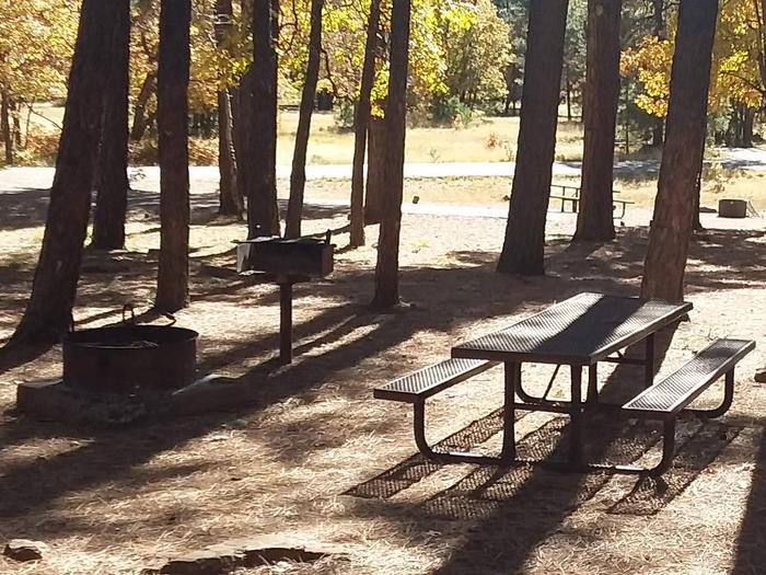 Site 85 around trees With a table, campfire and grill.Campsite 85
