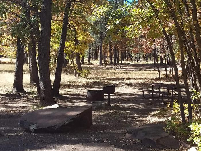 Site 93 between some trees, with a rock, fire ring, grill, and tableCampsite 93