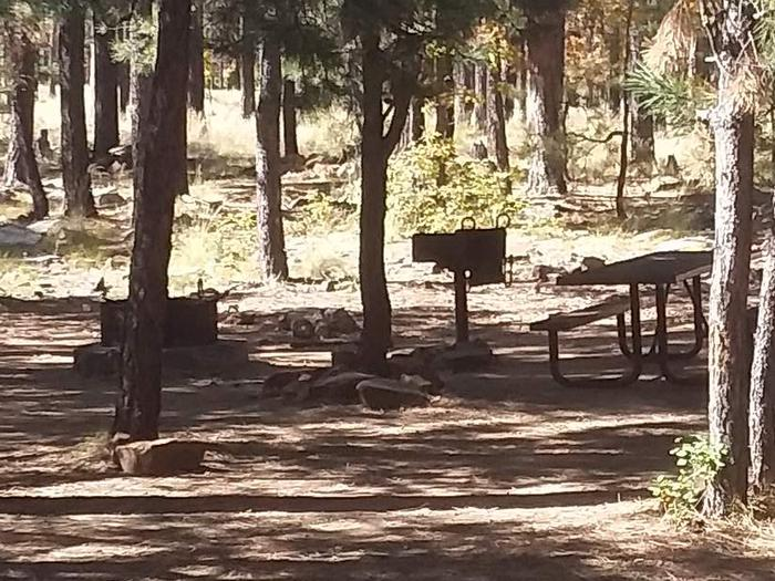 Site 108 in shade with table grill and fire ring.campsite 108