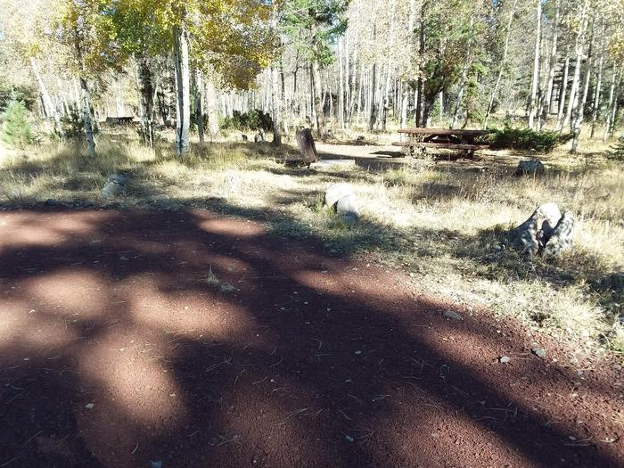 Campsite 21 partially shaded with picnic table and campfire ring