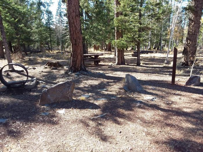 Campsite 23 partially shaded with picnic table and campfire ring