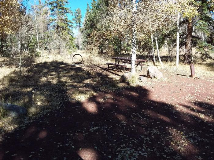 Campsite 25 partially shaded with picnic table and campfire ring
