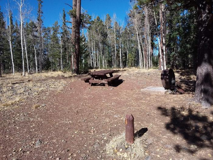 Campsite 28 with picnic table and campfire ring