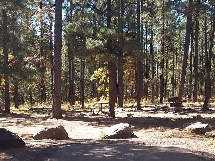Site 114 picnic table, grill, and fire ring behind some rocks and treesCampsite 114