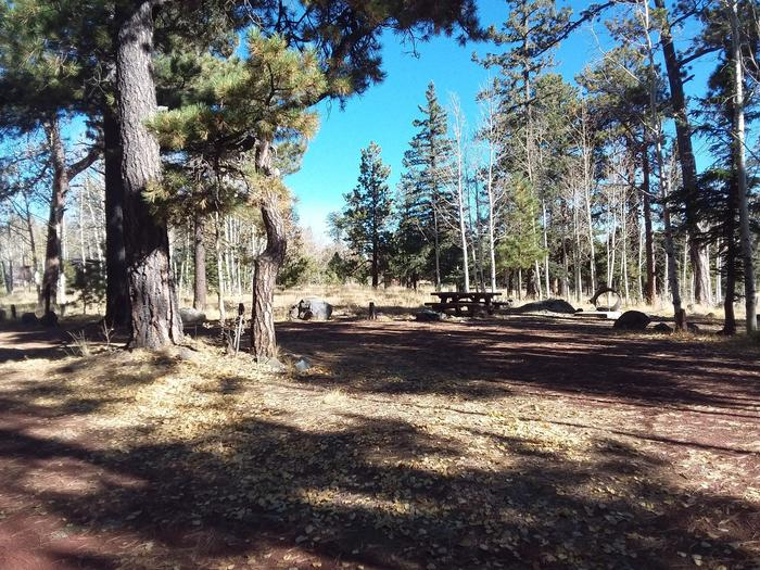 Campsite 44 partially shaded with picnic table and campfire ring