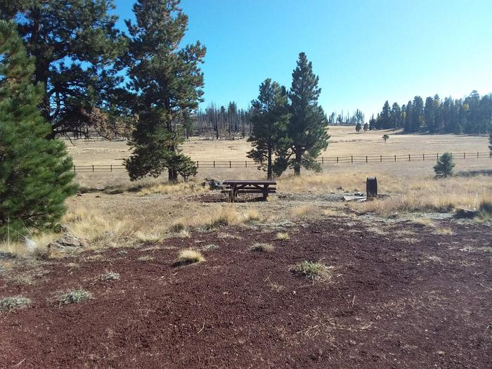Campsite 49 with picnic table, campfire ring and open field view