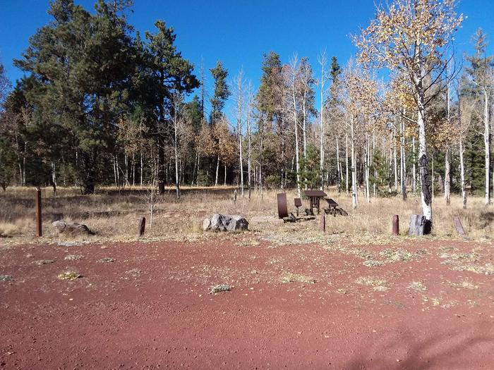 Campsite 39 with picnic table and campfire ring