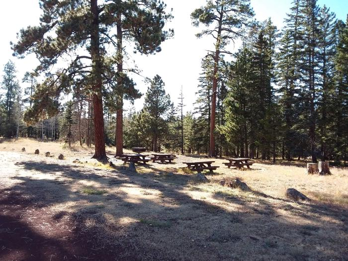 Campsite GN1 (Large Group) partially shaded with picnic tables, grill and campfire ring