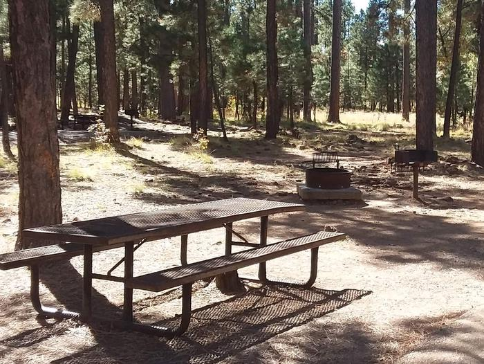 Site 126 table, fire ring and grill in a wooded area.Campsite 126