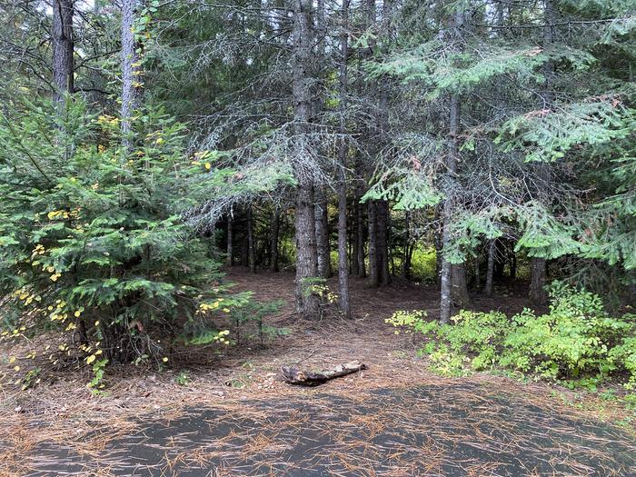 A photo of Site 020 of Loop POND at SWAN LAKE CAMPGROUND with Shade, Tent Pad