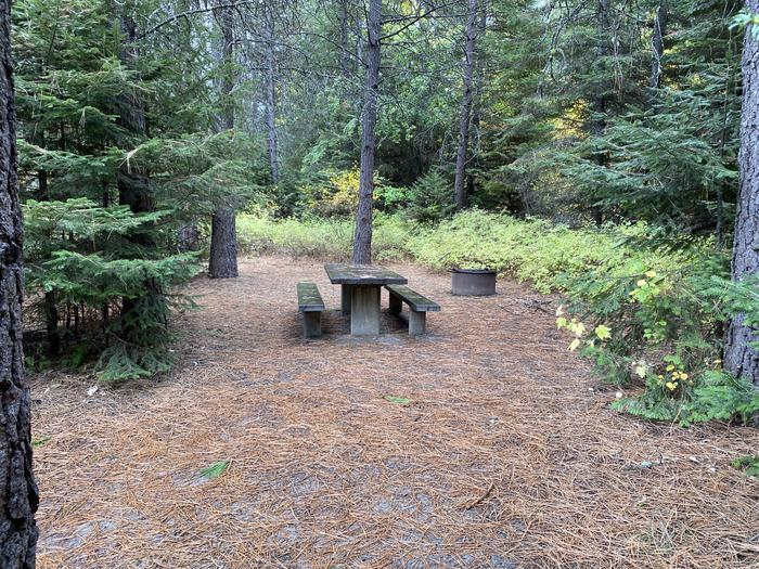 A photo of Site 020 of Loop POND at SWAN LAKE CAMPGROUND with Picnic Table, Fire Pit