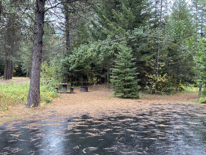 A photo of Site 031 of Loop POND at SWAN LAKE CAMPGROUND with Picnic Table, Fire Pit
