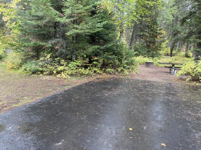 A photo of Site 009 of Loop BIRC at SWAN LAKE CAMPGROUND with Picnic Table, Fire Pit