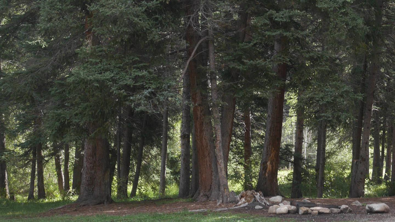 Santa Barbara Campground