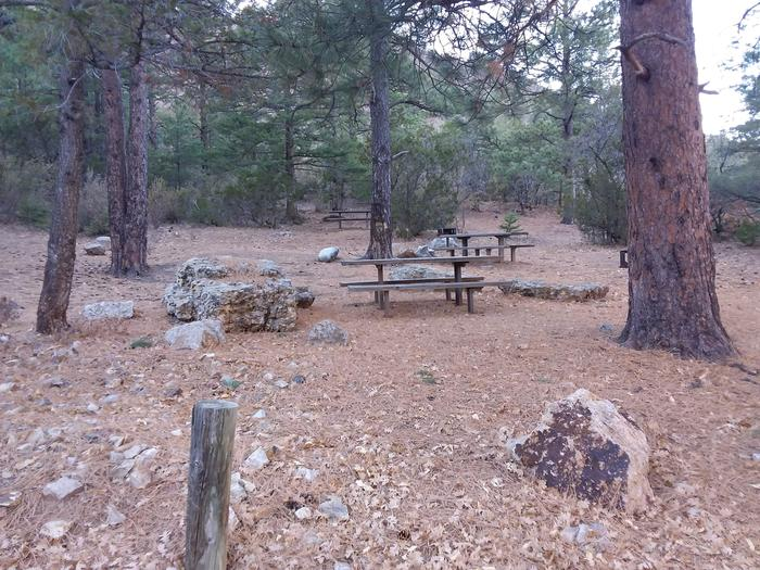 Picnic tables going up the hill. Camp grills are also with the tables.