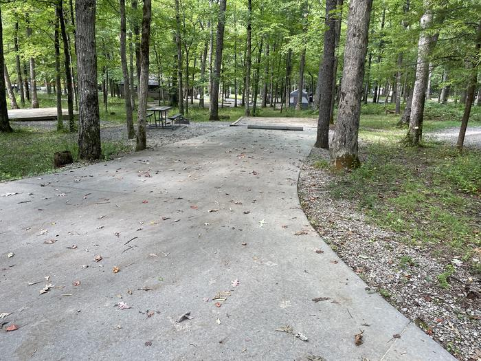 A photo of Site C51 of Loop Generator Free loop at CADES COVE CAMPGROUND with Picnic Table, Fire Pit, Shade, Tent Pad