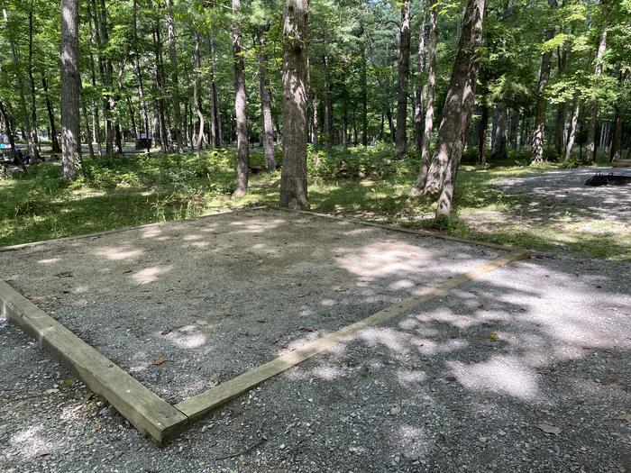 A photo of Site C51 of Loop Generator Free loop at CADES COVE CAMPGROUND with Shade, Tent Pad
