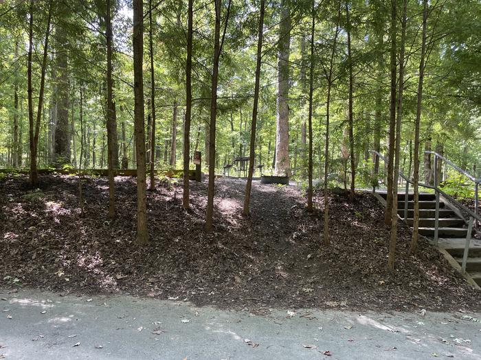 A photo of Site C27 of Loop Generator Free loop at CADES COVE CAMPGROUND with Picnic Table, Fire Pit, Shade, Tent Pad