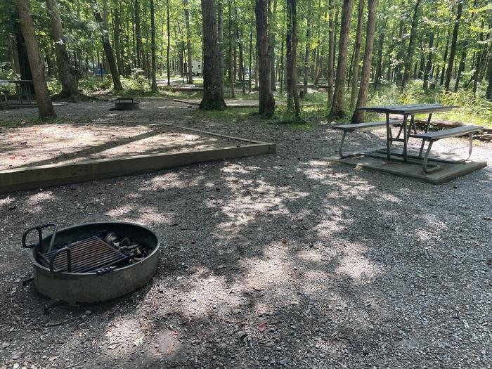 A photo of Site C27 of Loop Generator Free loop at CADES COVE CAMPGROUND with Picnic Table, Fire Pit