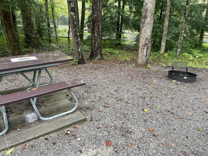 A photo of Site C15 of Loop Generator Free loop at CADES COVE CAMPGROUND with Picnic Table, Fire Pit