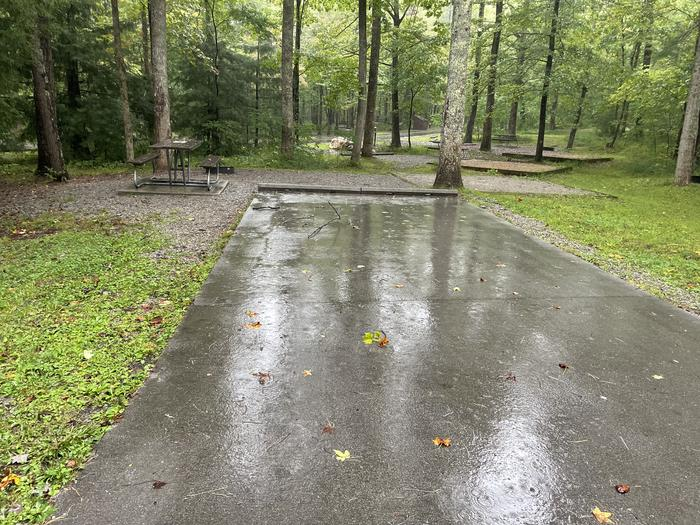 A photo of Site C15 of Loop Generator Free loop at CADES COVE CAMPGROUND with Picnic Table, Fire Pit, Tent Pad