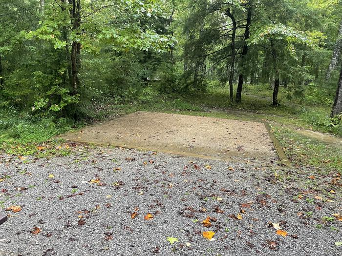 A photo of Site C18 of Loop Generator Free loop at CADES COVE CAMPGROUND with Tent Pad