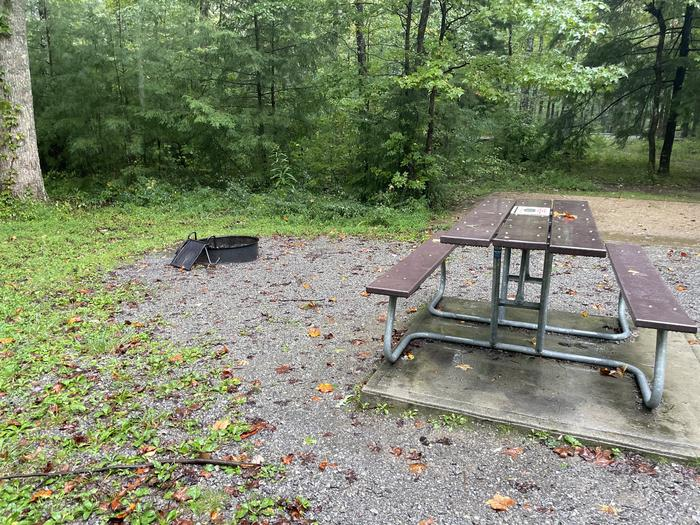 A photo of Site C18 of Loop Generator Free loop at CADES COVE CAMPGROUND with Picnic Table, Fire Pit