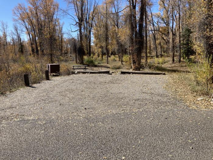 Site 294, loop F