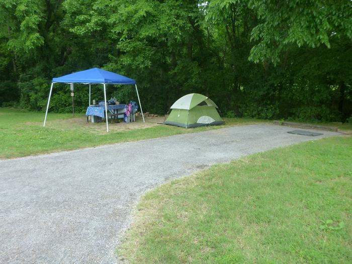 Tyler Bend Main Loop #3Site #3 is a 35' back-in site, no tent pad.