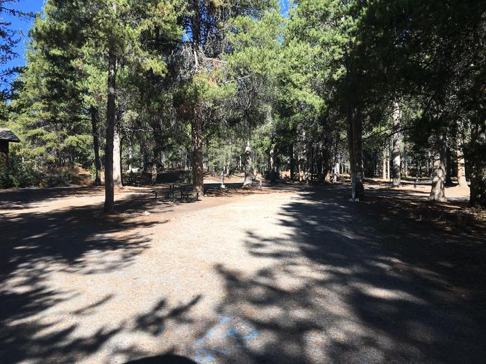 A photo of Site 14 of Loop A at Colter Bay RV Park with Full Hookup
