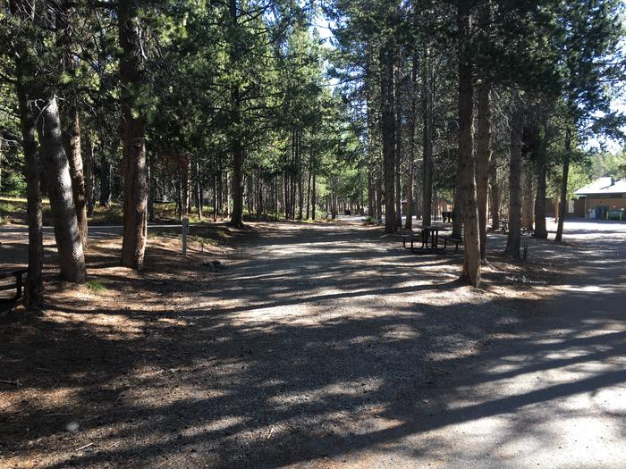 A photo of Site 4 of Loop A at Colter Bay RV Park with Full Hookup