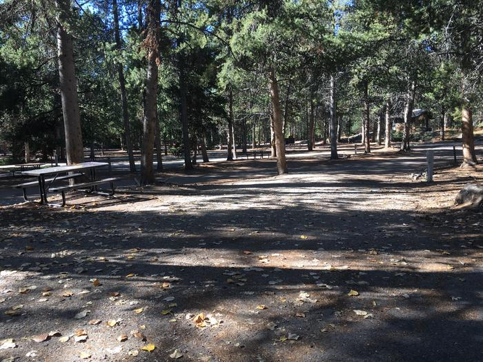 A photo of Site 9 of Loop A at Colter Bay RV Park with Full Hookup