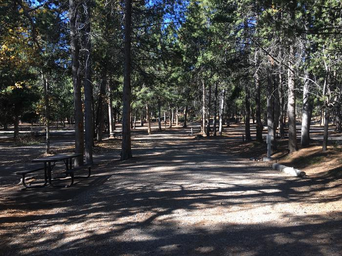 A photo of Site 5 of Loop A at Colter Bay RV Park with Full Hookup