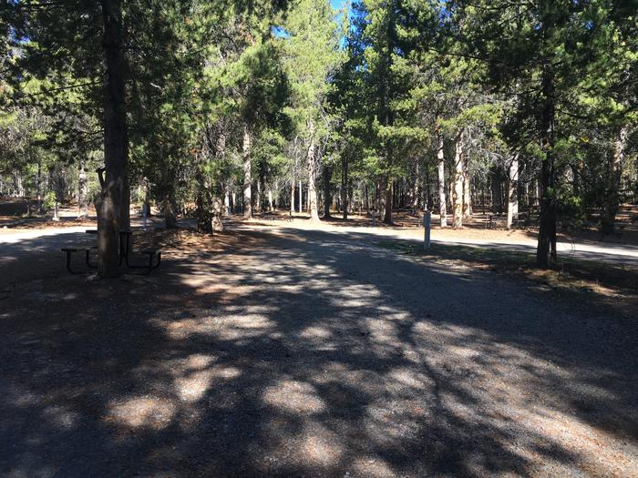 A photo of Site 16 of Loop A at Colter Bay RV Park with Full Hookup