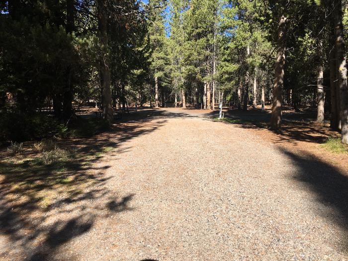 A photo of Site 18 of Loop A at Colter Bay RV Park with Full Hookup